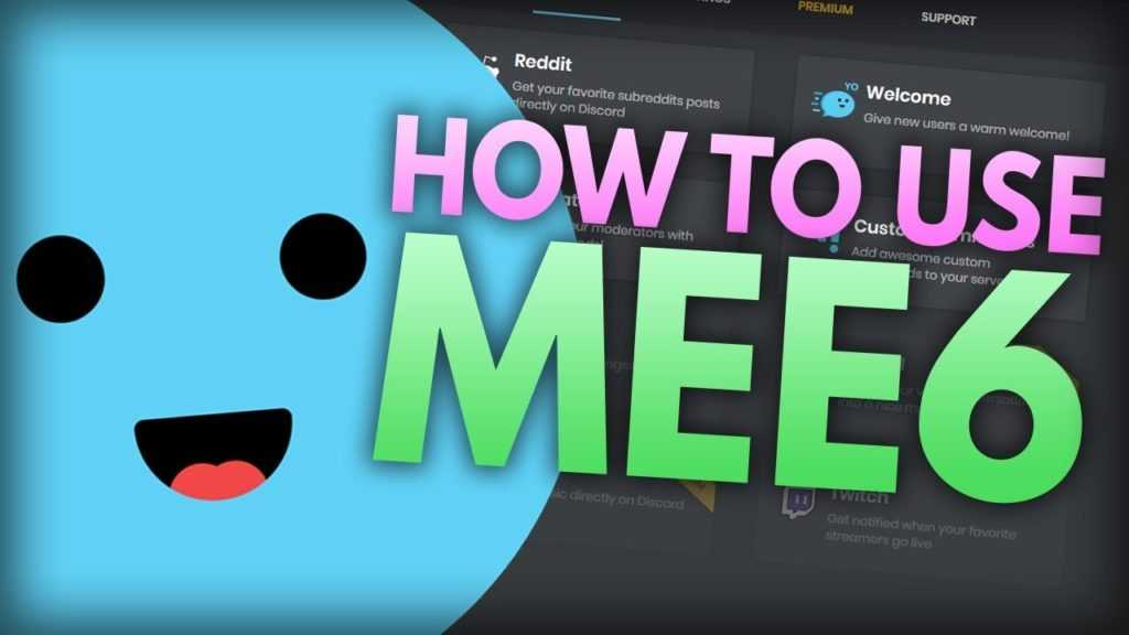 Online Discord Mee6 Bots Reviews & Guide